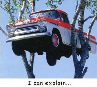 Parkir Mobil di Pohon